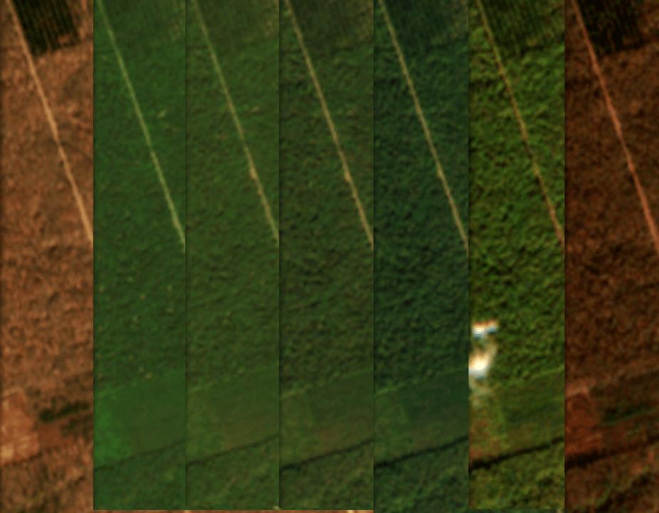 Observation satellitaire forêt de Chaux 2018