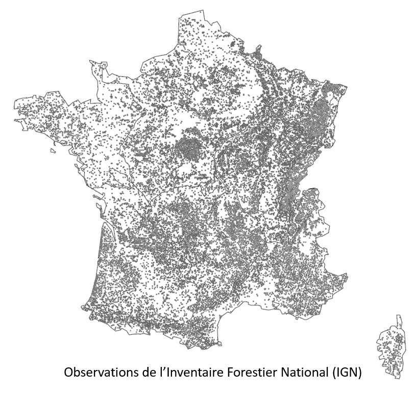 Carte des placettes de l'inventaire forestier national