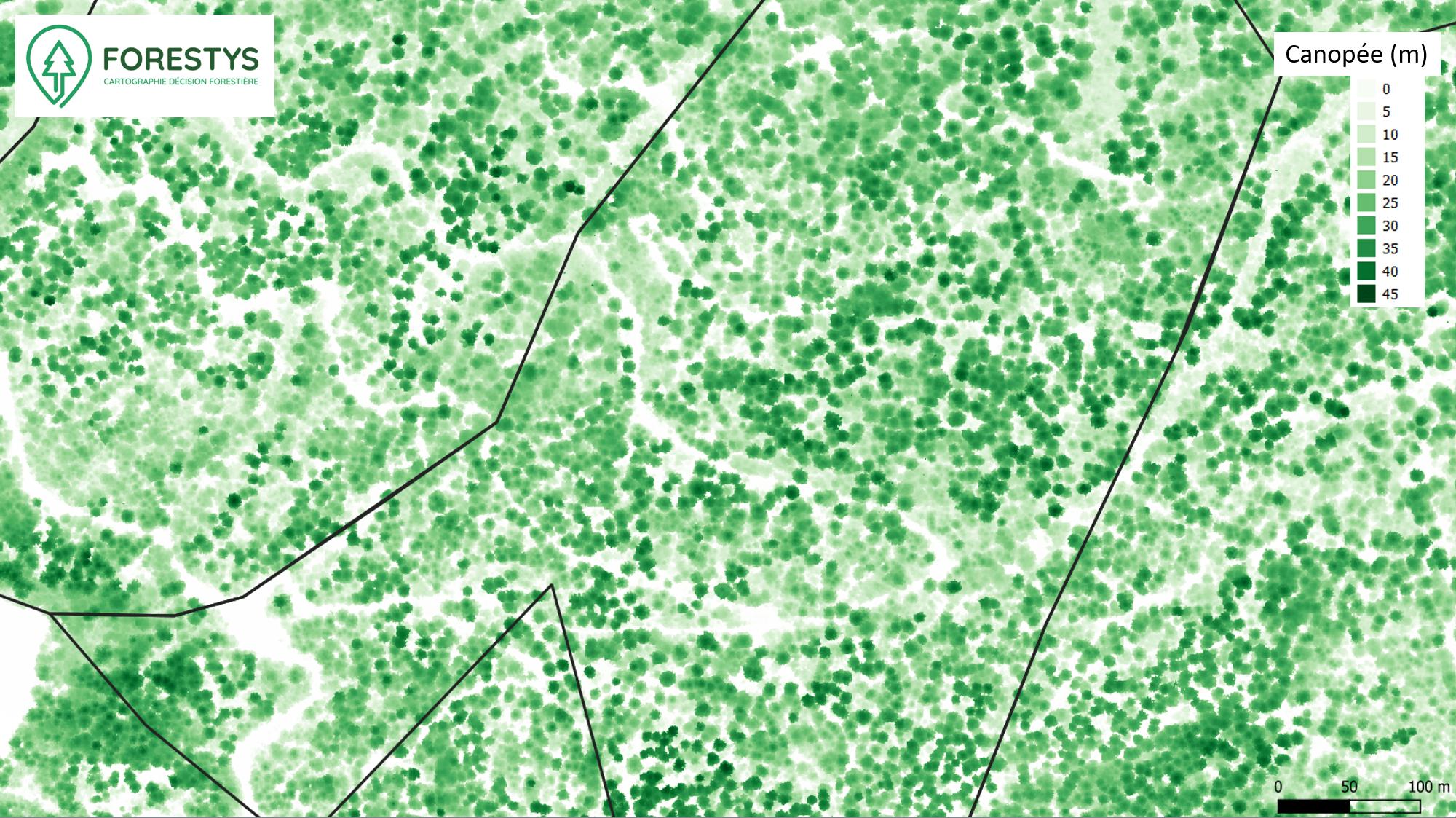 Carte de hauteur de canopée MNH