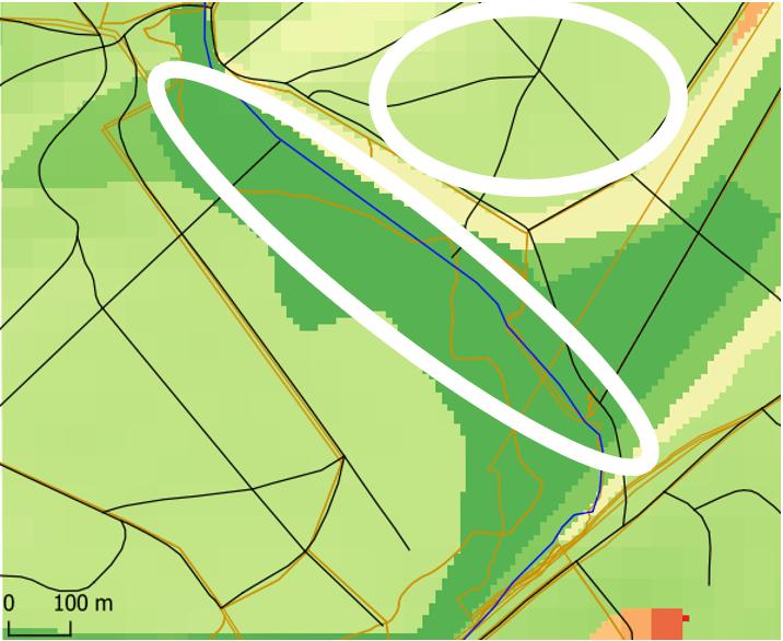 Chêne pédonculé - FPC future